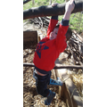 William enjoyed swinging in the tree!