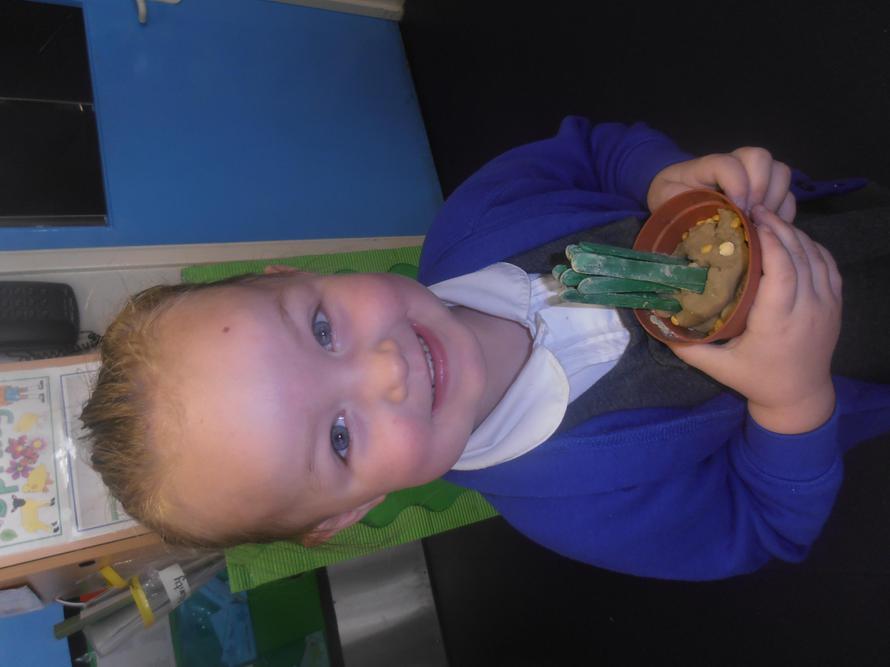 'I made a beanstalk'