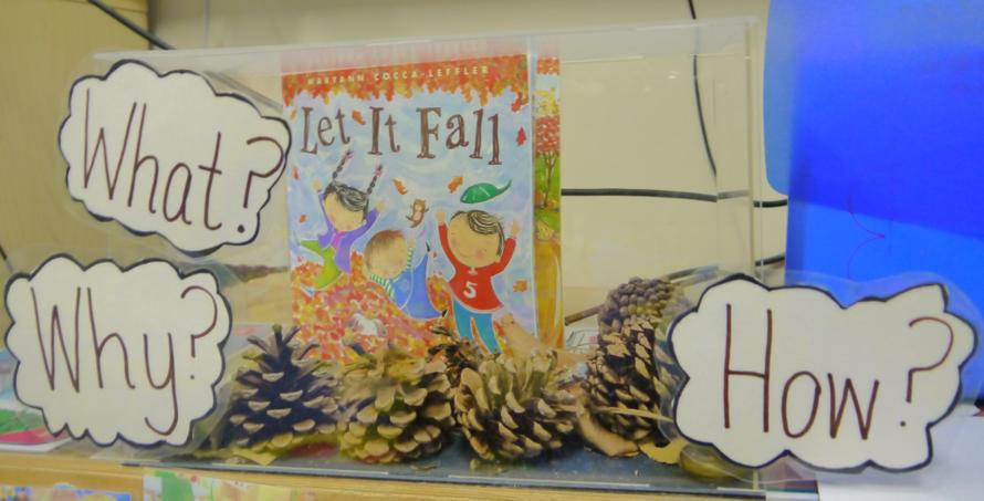 In Nursery we have introduced a 'Curiosity Cube' Our Curiosity Cube is based on Autumn. A