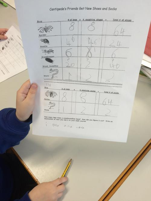 We completed maths on the Centipede's 100 shoes