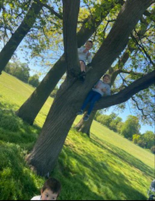 Kayla-Mae has been busy climbing trees!