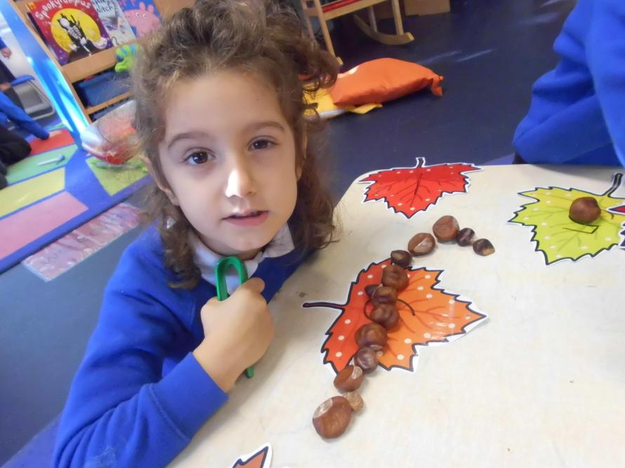 Nikol counted the conkers 1,2,3,4,5,6,7,8!
