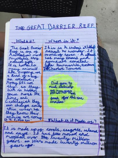 Lily's Great Barrier Reef research 4CW