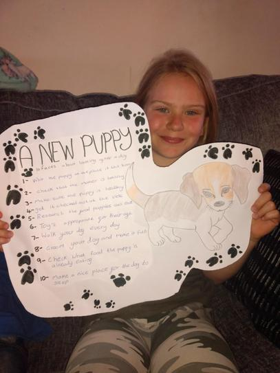 How to take care of a puppy 4CW