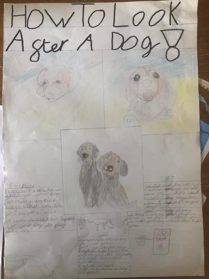 Kai Si puppy poster 4HP