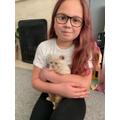 New kitten called Star,