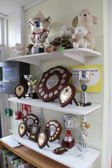 Our trophy collection