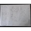 Susie Theme Park Map