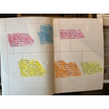 Bethany's Topic timeline
