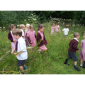 Next we went walking through the long grass.