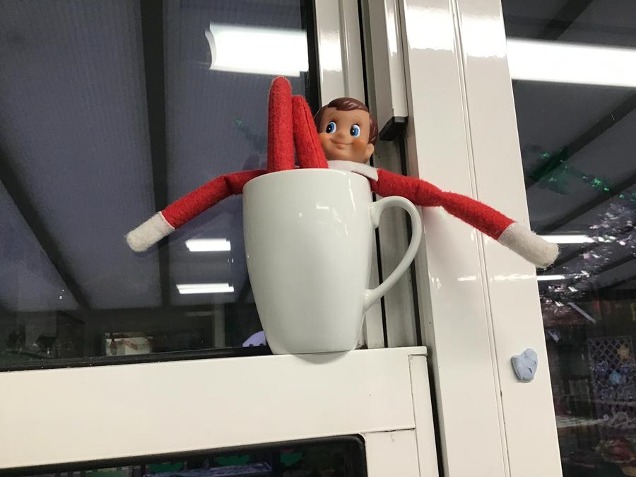 The elf is in a mug.