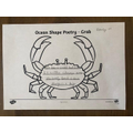 Daisy M's Crab Poem with a lovely simile