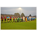 Football Team Flagbearers for Borehamwood F.C