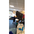 T-Rex in the classroom
