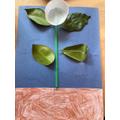 Henry J's flower