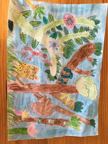 I love Lizzie's rainforest picture!