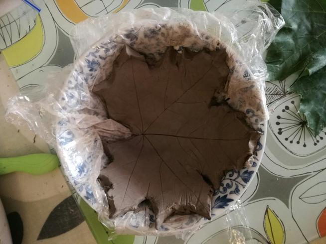 Dexter's clay leaf pot