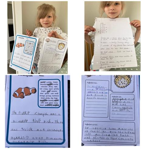Evalyn's sea creature fact files