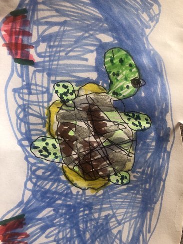 Luna's turtle using different media
