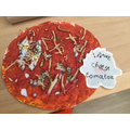 Zane's Pizza Model