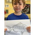 Clownfish Poem