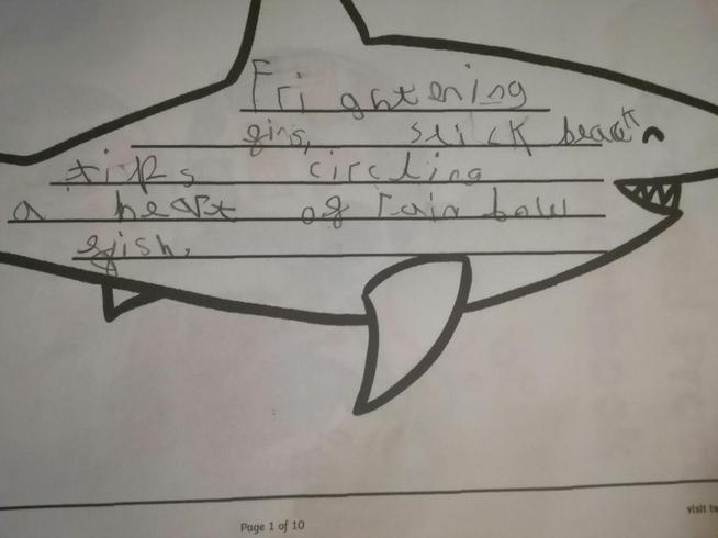 Dexter created a shark shape poem