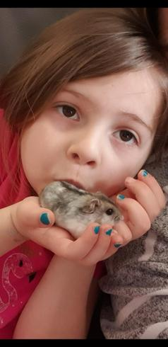 Sienna with her pet hamster