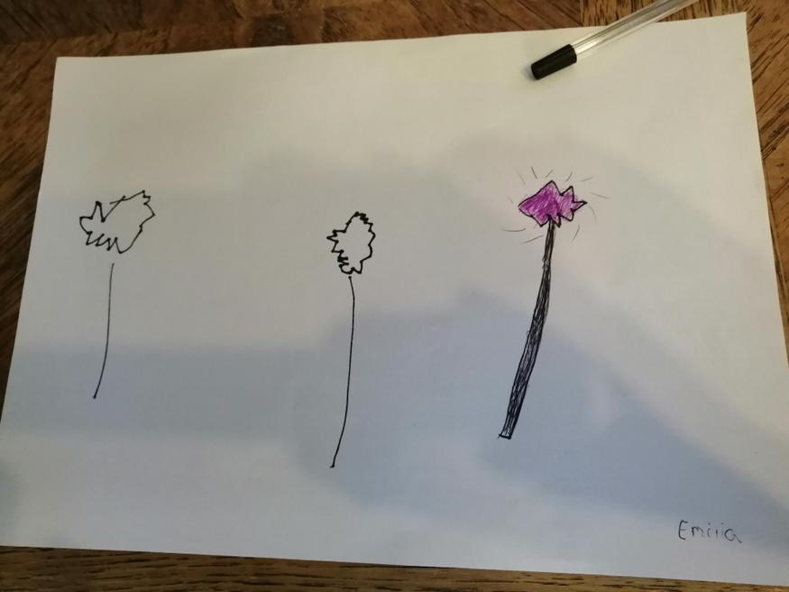 Emilia's fantastic wands