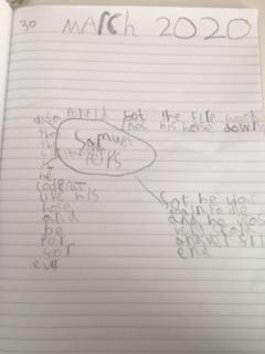 Amelia's facts about Samuel Pepys