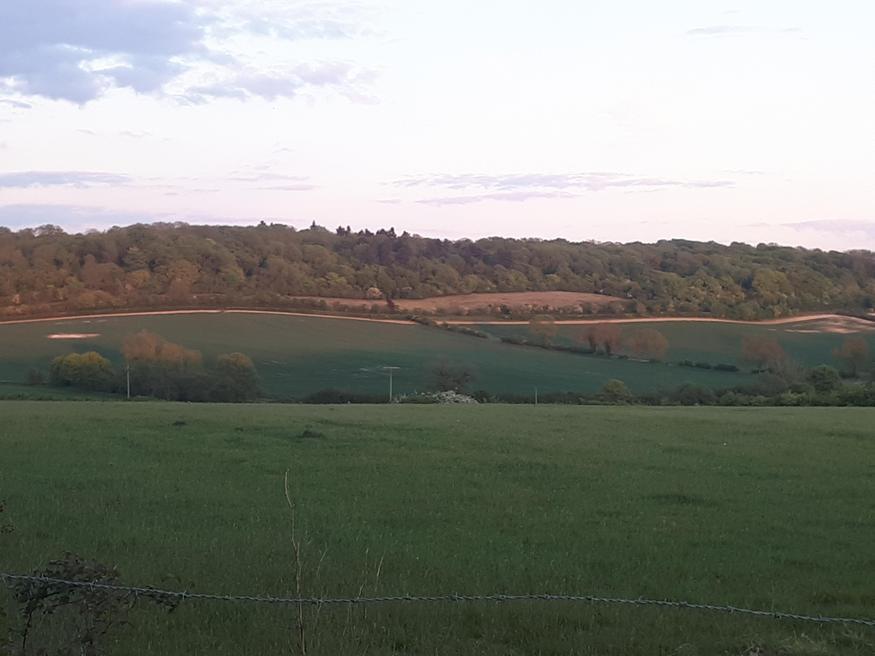 Beautiful views on Maia's bike ride
