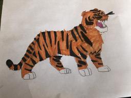 Spencer's tiger