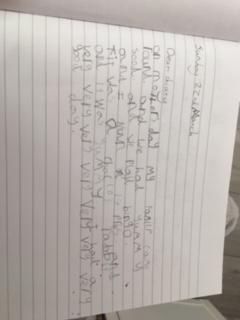 Amelia diary writing