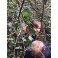 We climbed through the branches.