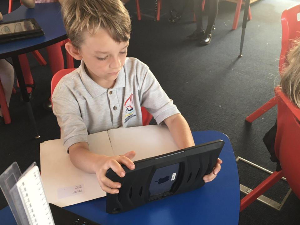 Reading and quizzing on Accelerated Reader