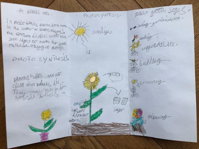 Delilah has worked incredibly hard on her leaflet!