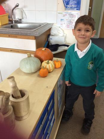 We like the pumpkins in our classroom