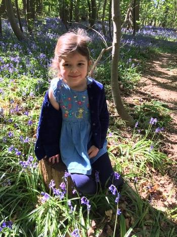 Out for a walk in the Bluebells