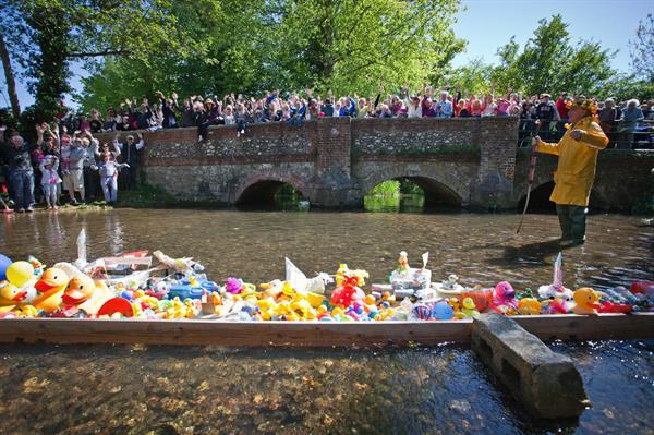 The Great Duck Race!