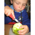 Selecting tools- chopping an apple.