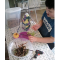 Hayden's Bird Feeder