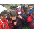 We explored the sensory garden