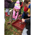 We made bird feeders using pine cones and seeds