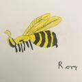 Rory, Year 2