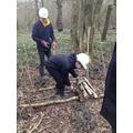 Work Experience at Westonbirt Arboretum