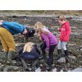 Exploring rock pools.
