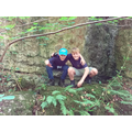Exploring Marle Hall Woods