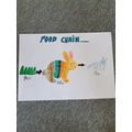 Olivia's food chain