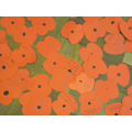 Each child wrote a message on a poppy