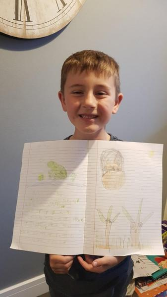 All about frogs- by Taylor