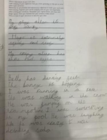 Menaal's marvellous writing!